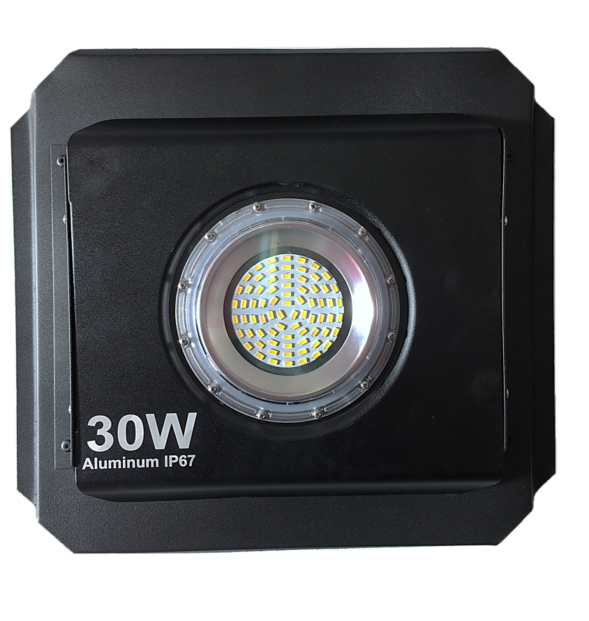 LED 30W RED